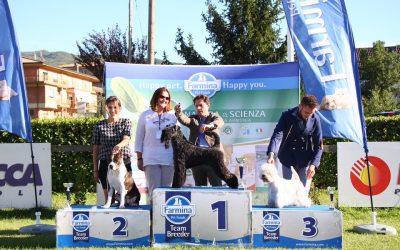 International dog show Frosinone