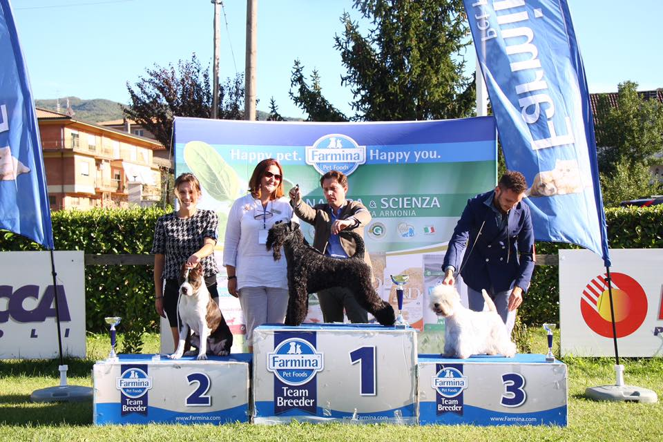 International dog show Frosinone
